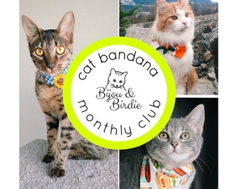 Cat Bandana Subscription / Small Dog Bandana Subscription / 2 Bandanas per Month / Unique Gift / Gift for Cat Lovers / Pet Fashion