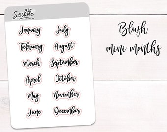FOIL OPTION! MINI Monthly Headers, Weekday Script Stickers, Planner Stickers, Bullet Journal Stickers, Days of the Week