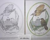 Alabama - Black Line Drawing Limited Edition Bundle