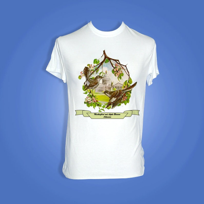 Arkansas  Art of the State T-Shirts image 0