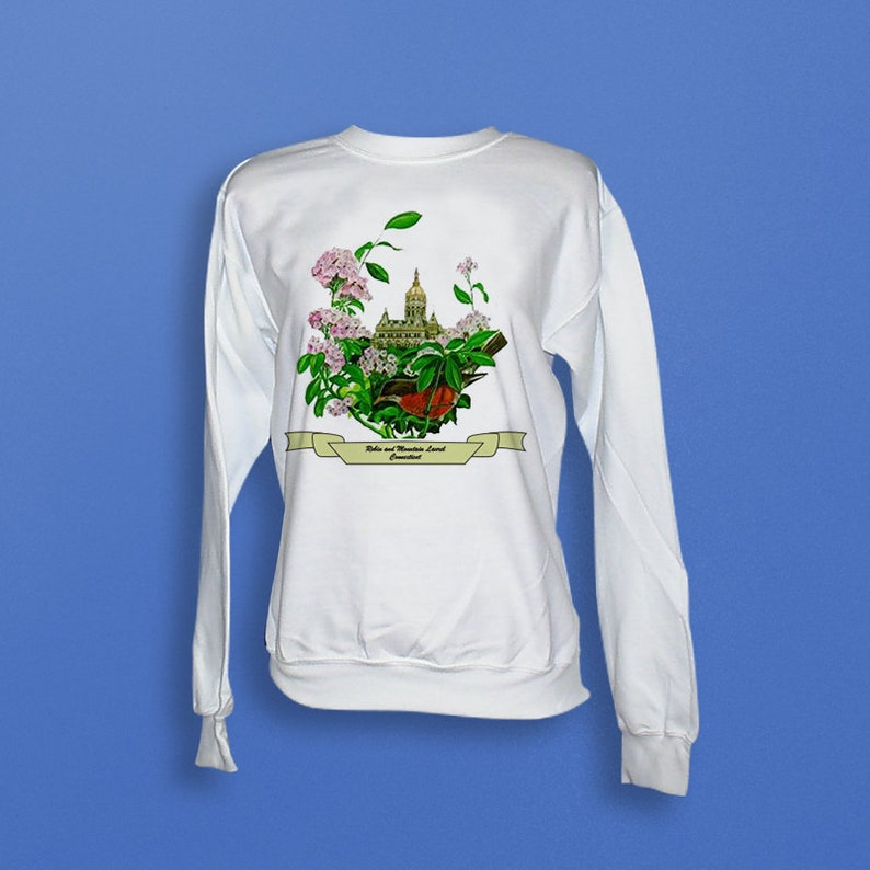 Connecticut Art of the State Sweatshirt image 0