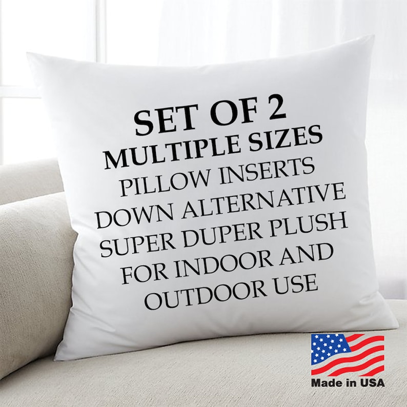 2 Down Alternative Pillow Forms Euro Pillow Inserts square image 0