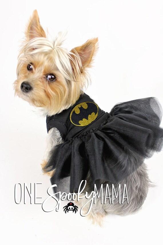 Small dog wearing black tutu with batman logo.
