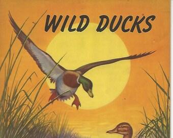 ae792256c40 Vintage 1941 Wild Ducks American Wildlife Institute Washington D.C.  Illustrated by Fred Everett