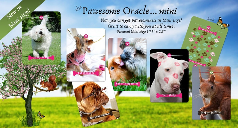 The Pawesome Dog Oracle Deck Oracle Cards image 0