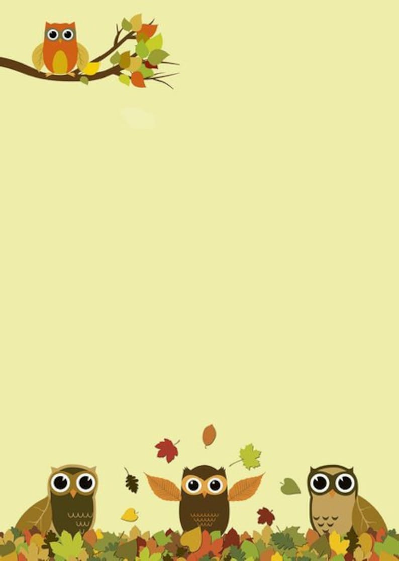 Motivpapier Briefpapier Eulen Brautpaar Hochzeit Eule owl Love 50 Blatt DIN A4