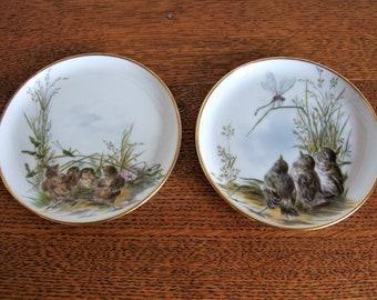 vintage 2 plates birds emperor porcelain