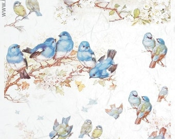 Rice paper Decoupage. 3pc A4 Birds song/_Ostern