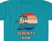 Serenity Now T-Shirt, Funny Seinfeld Shirt, Funny Christmas Gift Idea, TV Show Fan, TV Show T-Shirt, Popular 90's Show, TV Show Character