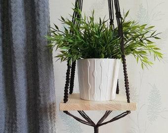 wandregal pflanzen
