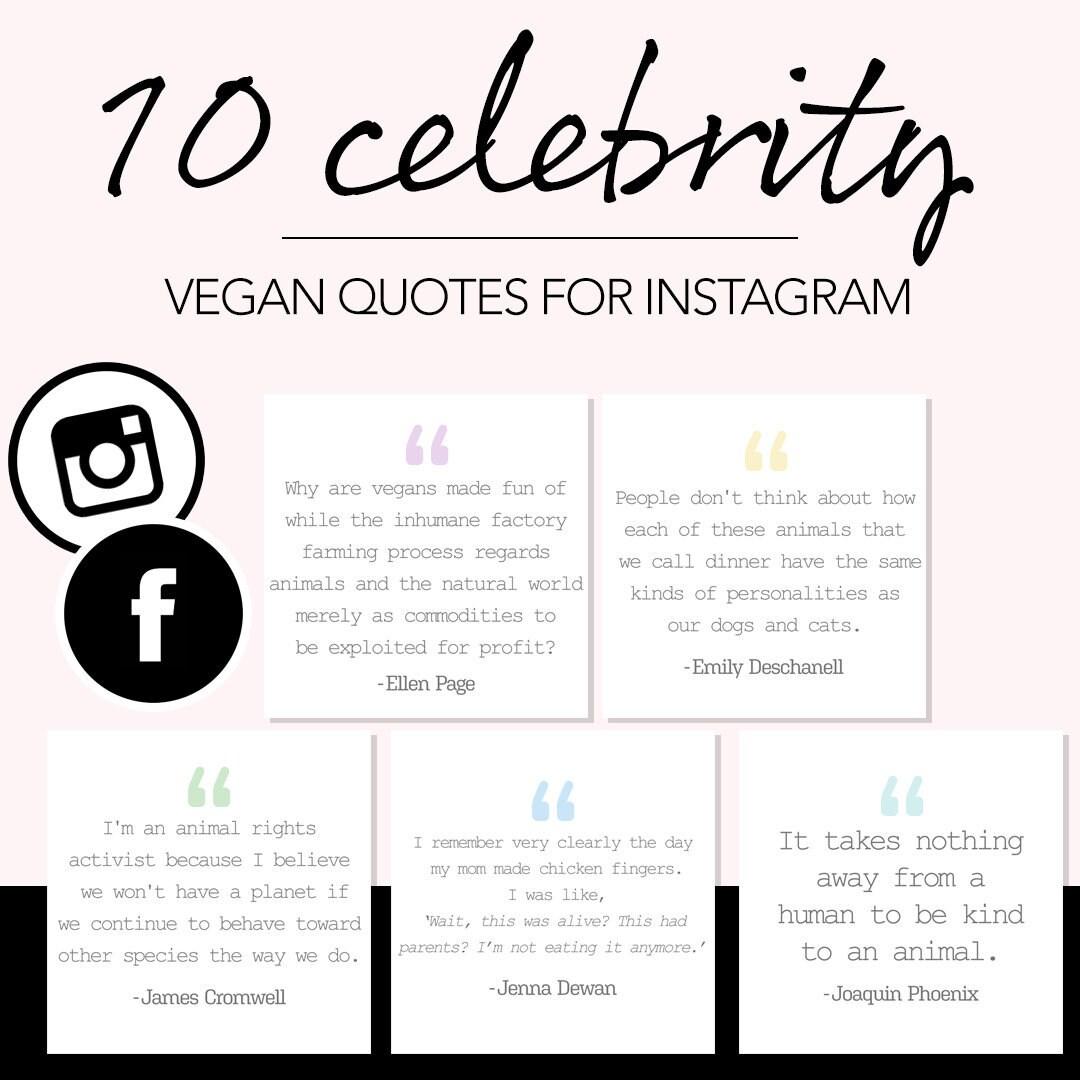 Vegan Instagram Quotes Etsy