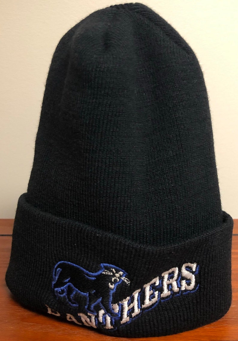 Vintage Carolina Panthers beanie by the game