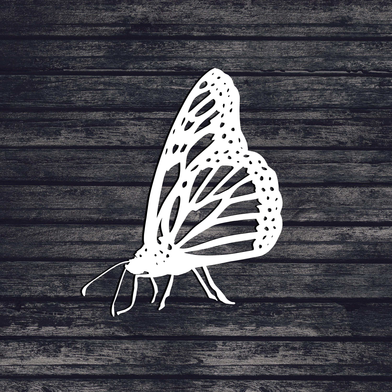 Butterfly Svg, Bug Svg, Cut File For Cricut, Svg, Svg Files, Svg