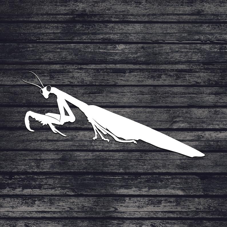 Praying Mantis Svg, Bug Svg, Cut File For Cricut, Svg, Svg Files, Svg Files  For Cricut