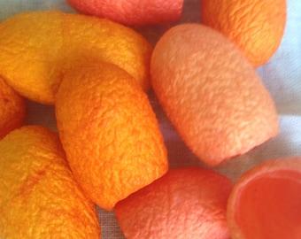 Silk cocoons oranges