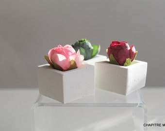 Trio of roses on white concrete base