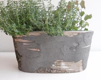 Jardinière écorce et béton gris