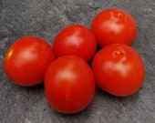 Licobello - Tomato seeds