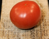 Bellstar - early tomato for short summers