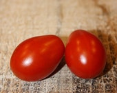 Red pear - historical tomato