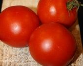 Red Heinz - historical tomato