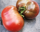 Black of Crimea - Black Crimea Tomato - Sweet-juicy meat tomato
