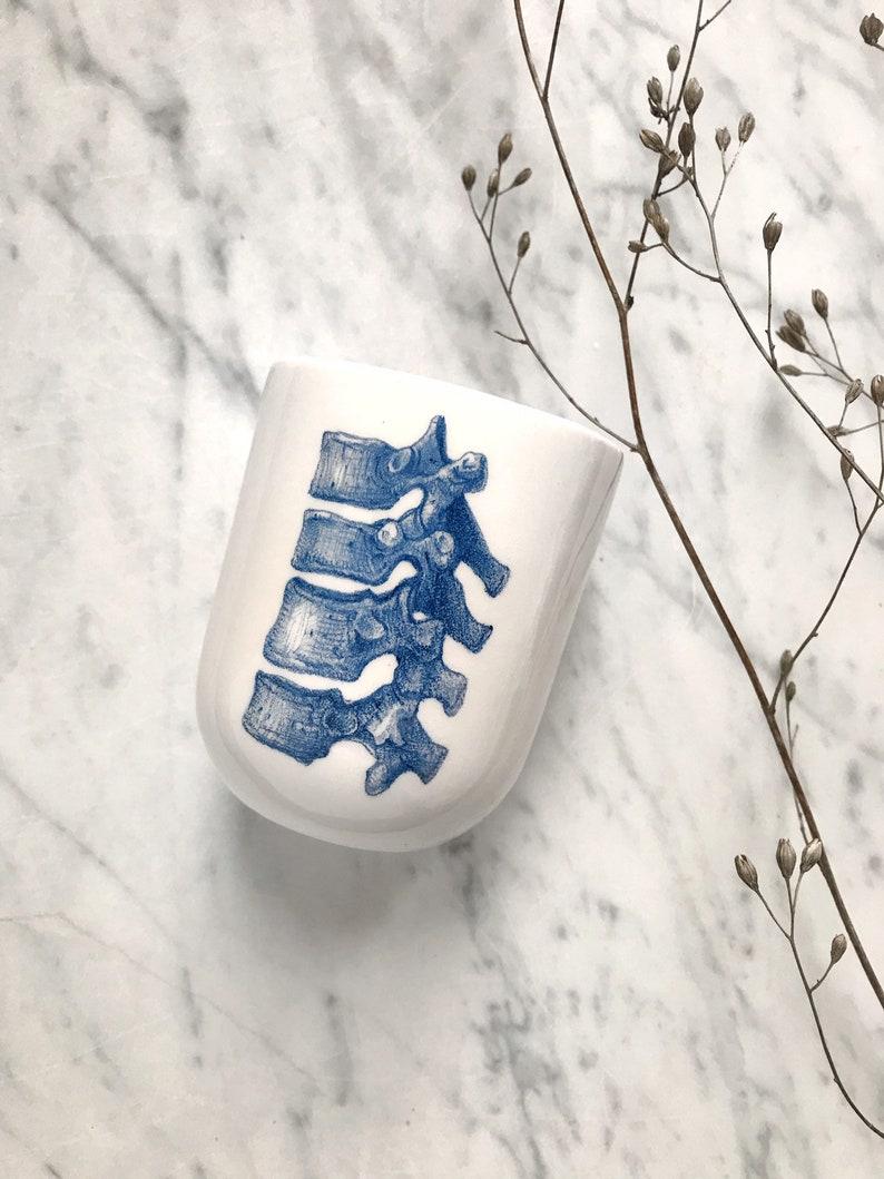 Vertebrae illustrated ceramic glass image 0