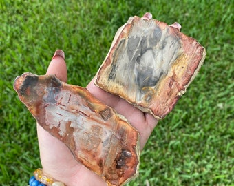 Petrified Wood Slab - petrified wood slice - mineral specimen -fossilized wood -healing crystals stones -home decor- Fossil metaphysical