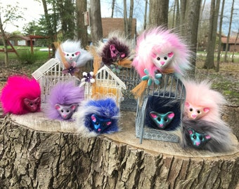 Pygmy puff - large variety of colors
