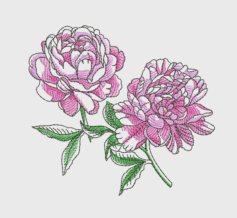 machine embroidery design line pink Broidery 4 sizes Peony Broderie contour