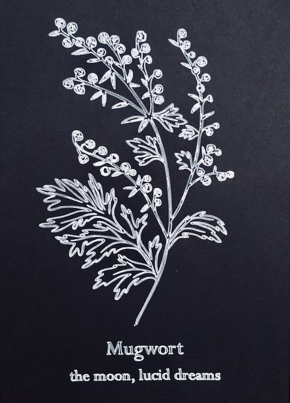 Botanical Print Mugwort