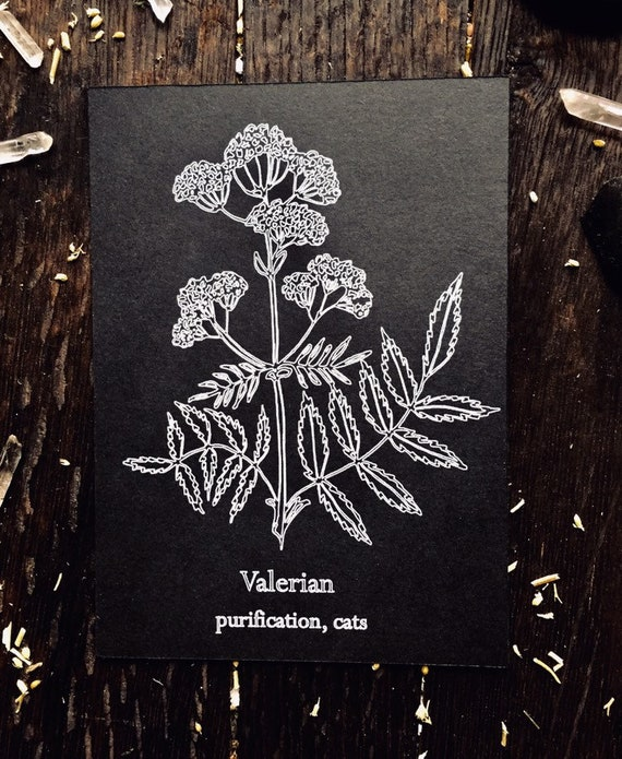 Valerian white ink print