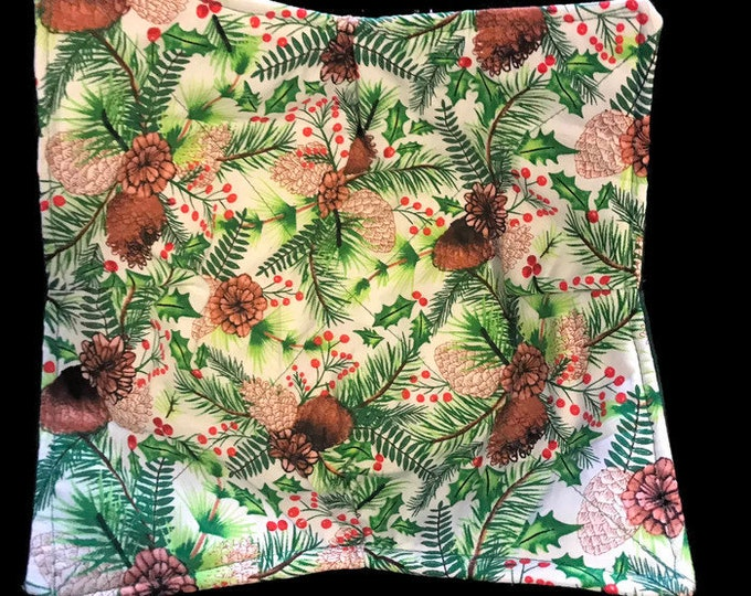 Microwavable bowl cozie, winter, pine cone, christmas, Quilted, reversible, pot holder, cozy or trivet.