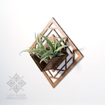 Wall Hanging Planter 02
