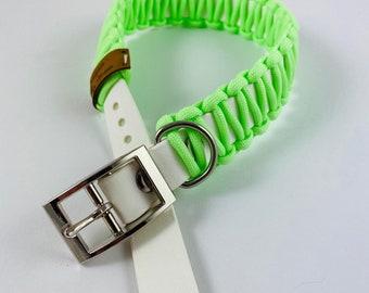 Collar Light Collar Glow in the Dark GlowitD Dog Collar