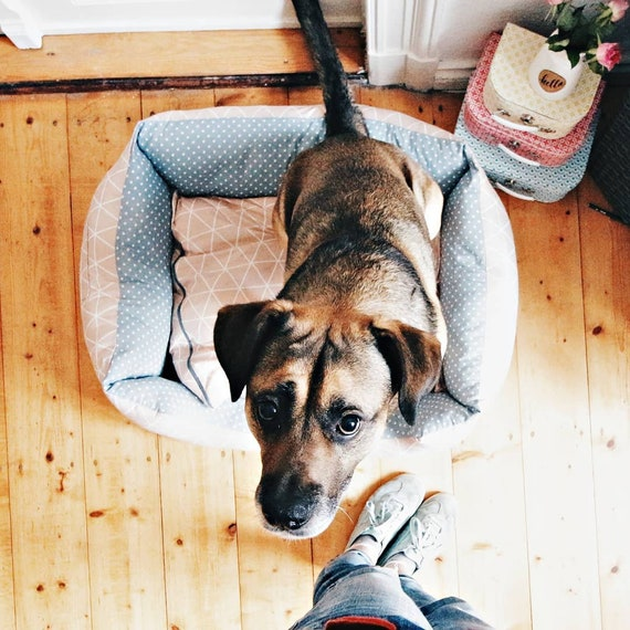 Nähanleitung Hundebett nähen Schnittmuster Hund Ebook | Etsy