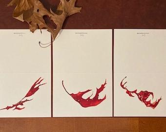 Original Ink Drawings, the Oak Leaves set of 3 greeting cards