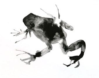 inky frog