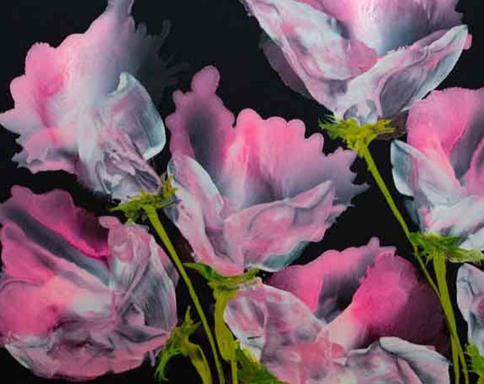 Pink Fling - 8.5 x 11 Print