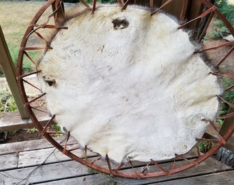 Genuine Beaver Round/Pelt Stretched on Red Wood Round Hoop With  Leather