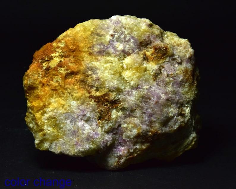 Fluorescent Phosporescent Light Color Change Hackmanite with Winchite 352 gram