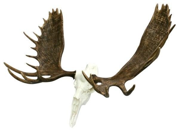 Faux European Alaskan Moose Mount