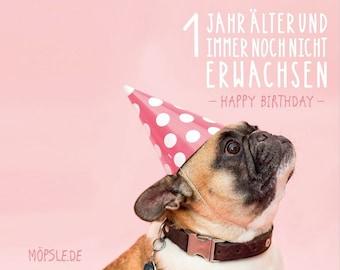 Congratulations pug | Etsy