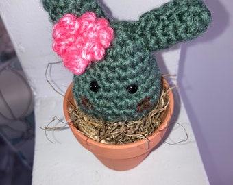 """Cactus/Bunny """"Plant"""""""