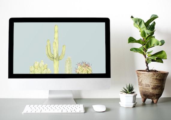 Cactus Desktop Wallpaper 4 Ready To Use Designs Computer Background Desert Theme