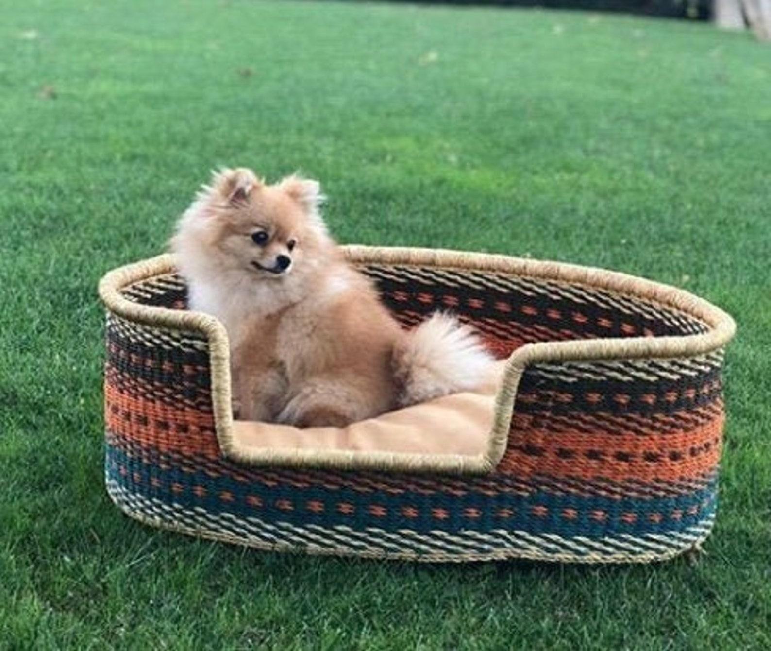 Dog sitting in wicker dog. bed