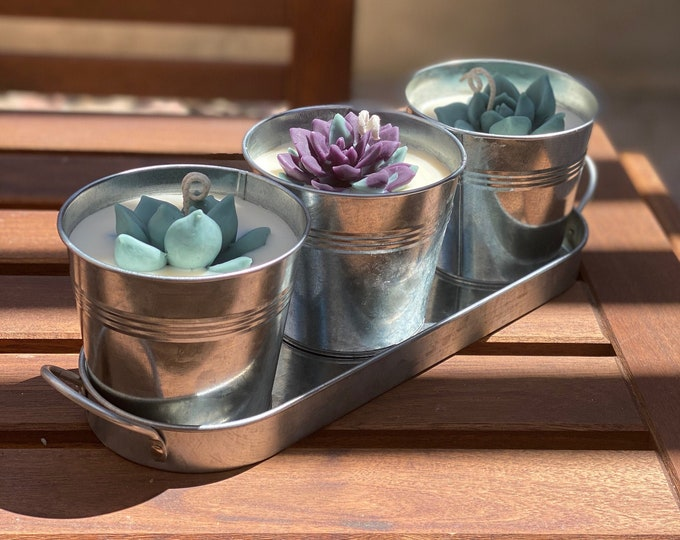 Beautiful Citronella Succulent Trio Candle Set | Beeswax and Soy Blend