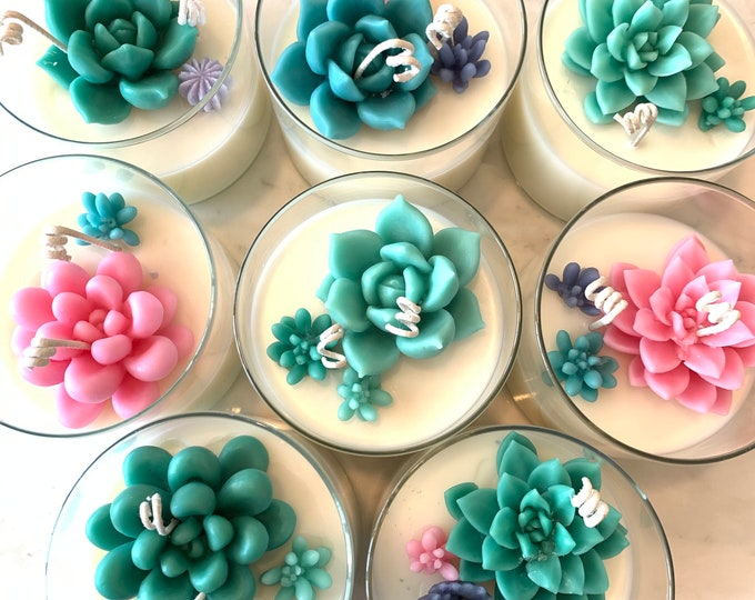 Succulent Candles made with Soy/Beeswax blend (Almond Tea scented)