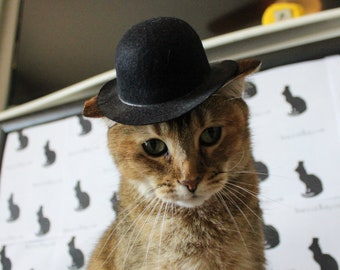 c9c527d356c69 Bowler Cat Hat for your Cat