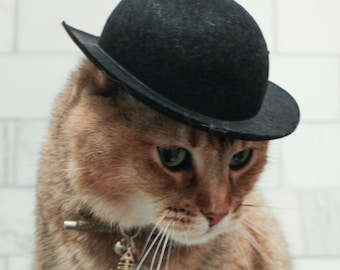 5604054cee183 LARGE Black Bowler Cat Hat-- Tough guy Cat Hat FREE SHIPPING